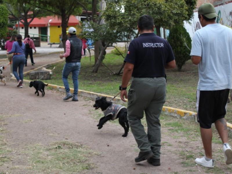 Regresa ''CanConfiable'', adiestramiento gratuito para canes