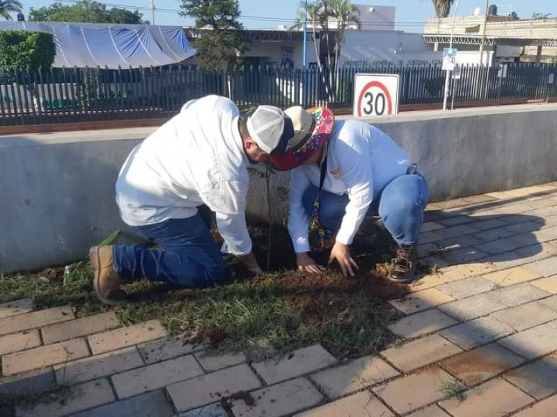 Rehabilitan áreas verdes de Tuxpan