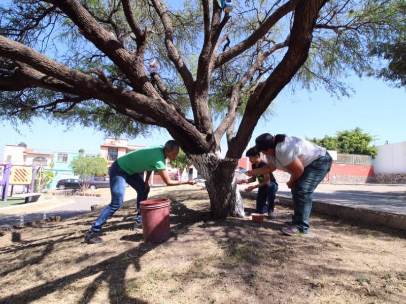 Rehabilitan parque en Candiles