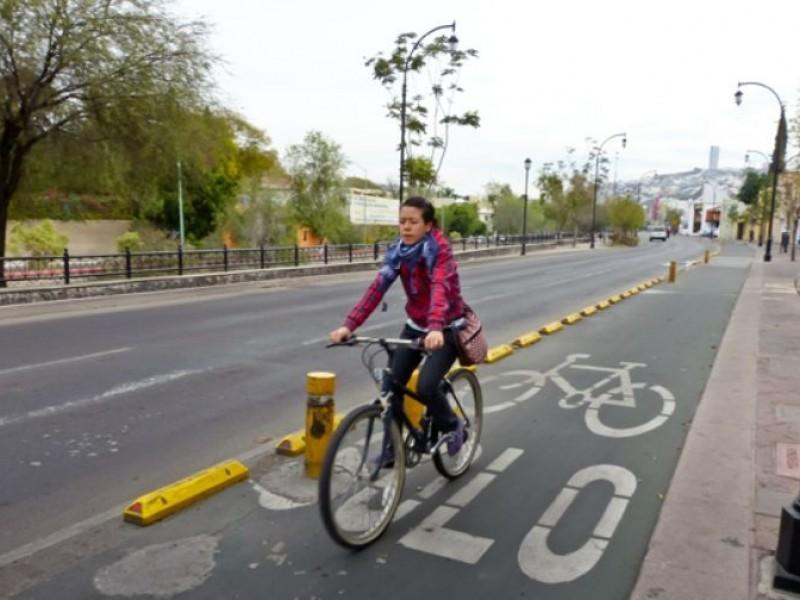 Rehabilitarán ciclovías más demandadas en la capital