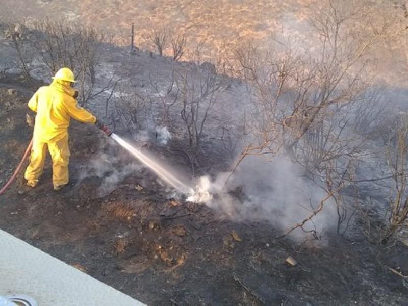 Reporta Conafor incendios liquidados en Baja California