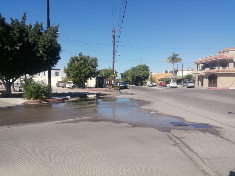 Reportan fuga de agua potable en colonia Adolfo Ruiz Cortínez