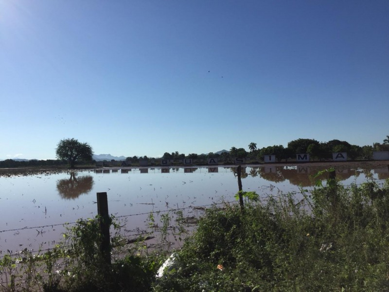 Reportan perdida total en comunidades de Acaponeta