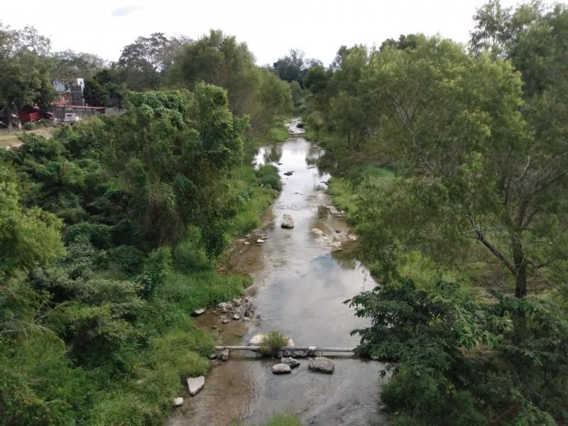 Reportan siete municipios veracruzanos con sequía severa