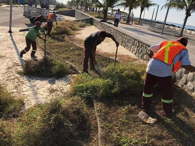 Rescate de espacios públicos en Tapachula