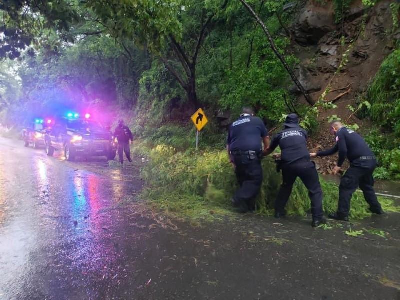 Restablecen suministro de luz en municipios michoacanos afectados por Nora