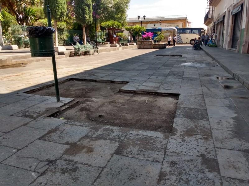 Retiran jardineras para construir andador culinario en Jerez