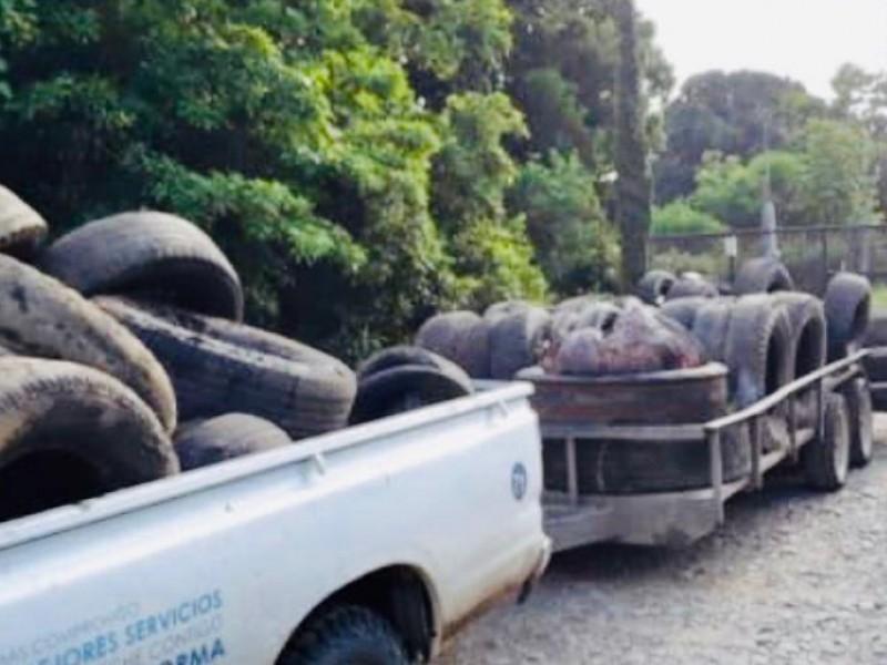 Retoman campaña de reciclaje en Álamo