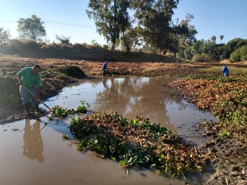 Retoman limpieza en rivera del Río Lerma