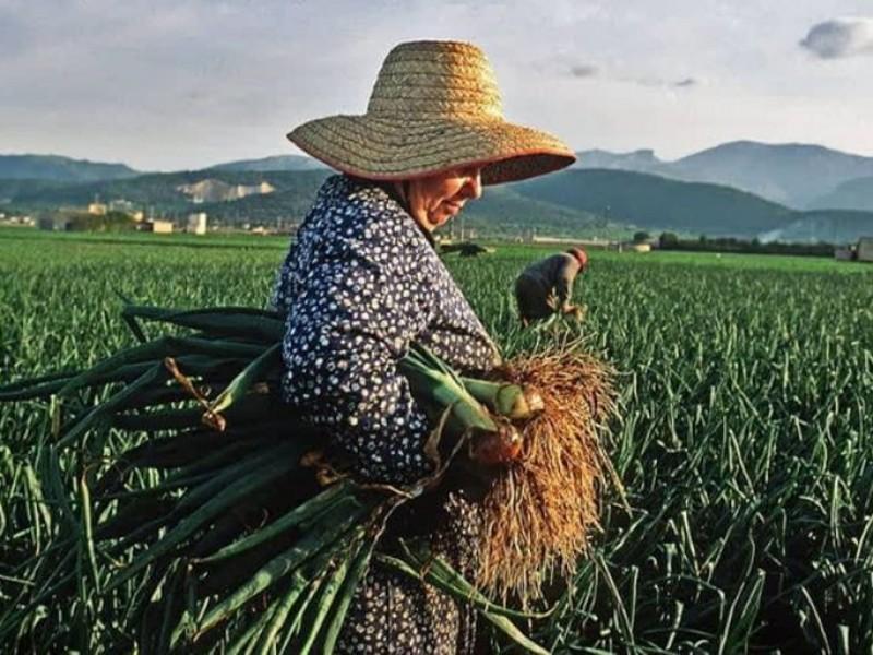 Retos que enfrenta la mujer rural en México