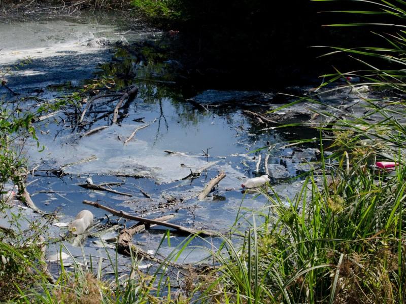 Río Mayo entre la sequía, tala de árboles y contaminación