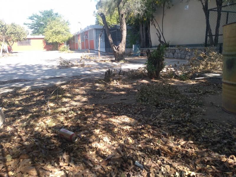 Robos y falta de limpieza sufren escuelas durante contingencia