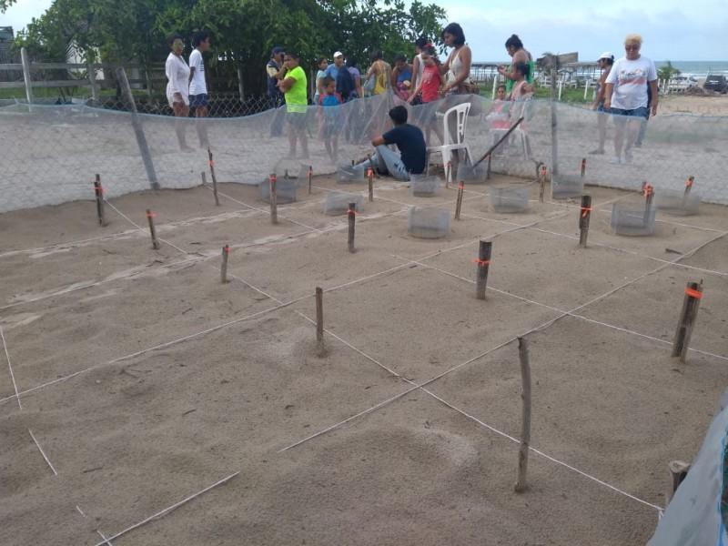 Rotarios Reunirán Fondos para Campamento Tortuguero