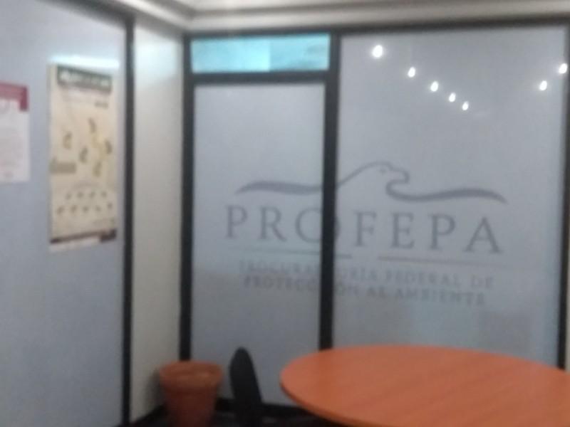 Sale Santiago Luna de Profepa,