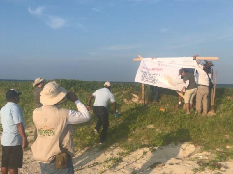 Salmedina cierra al turismo por muerte de tortugas