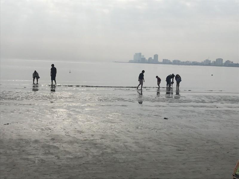 Se aleja el mar de playas de Veracruz