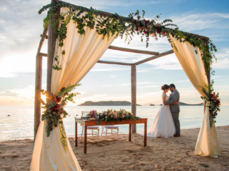 Se busca rescatar hasta 400 bodas en San Carlos