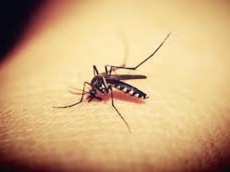 Se confirman casos de Chikungunya en Nayarit