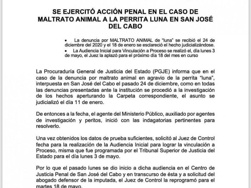 """Se ejerció acción penal por maltrato animal de """"Luna"""""""