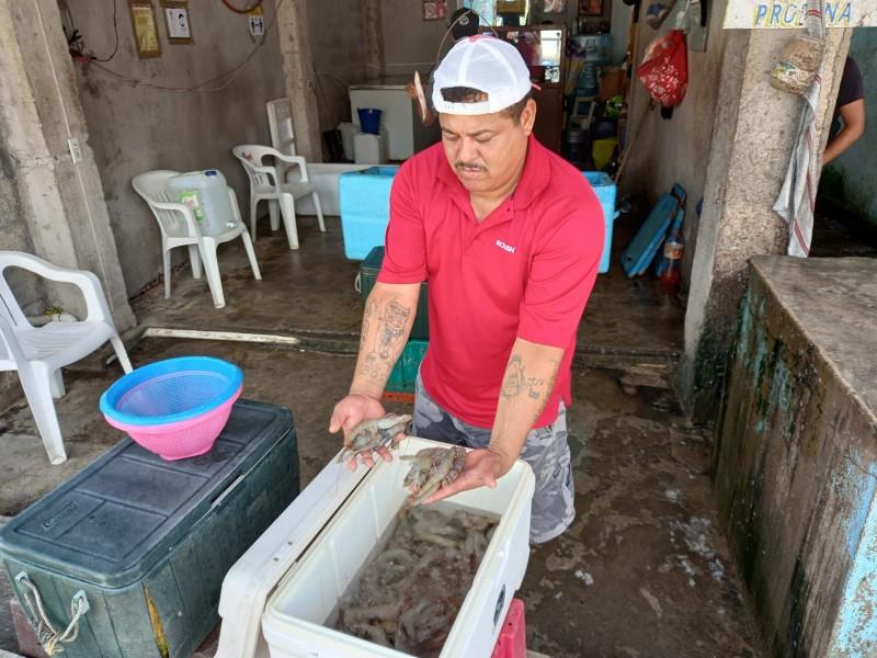 Se esfuerzan por cumplir con pedidos en pescaderías de Tuxpan