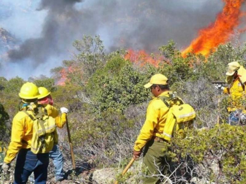 Se incrementa superficie siniestrada por incendios en Chiapas