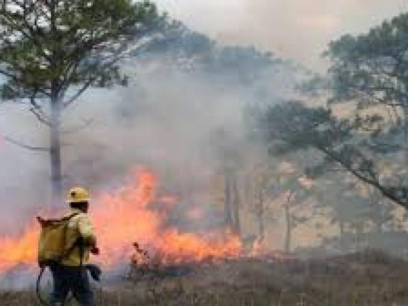 Se incrementan, en Chiapas, hectáreas consumidas por el fuego
