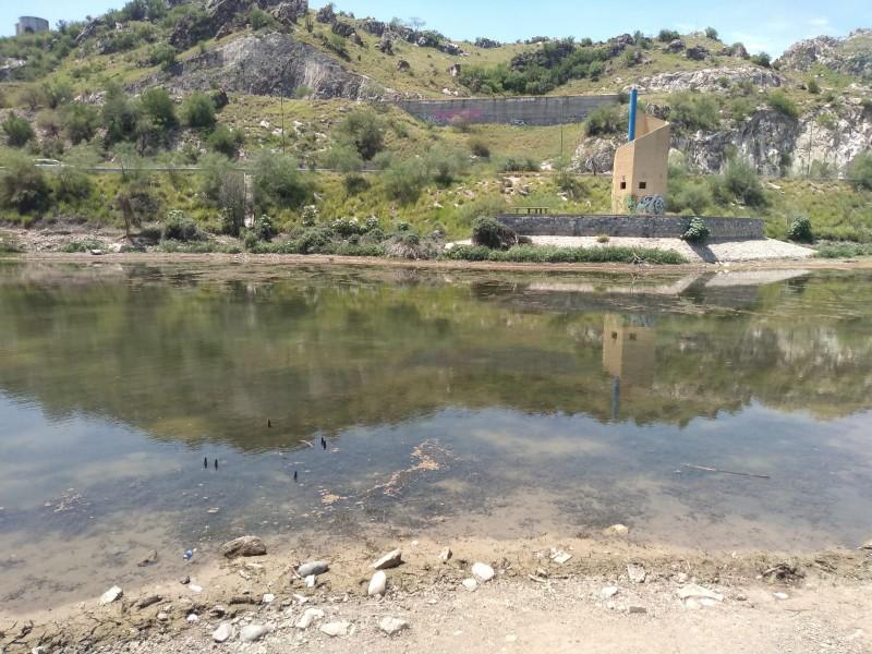Se mantiene nivel de agua en laguna de La Sauceda