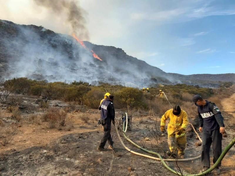 Se mantienen los incendios forestales en Baja California