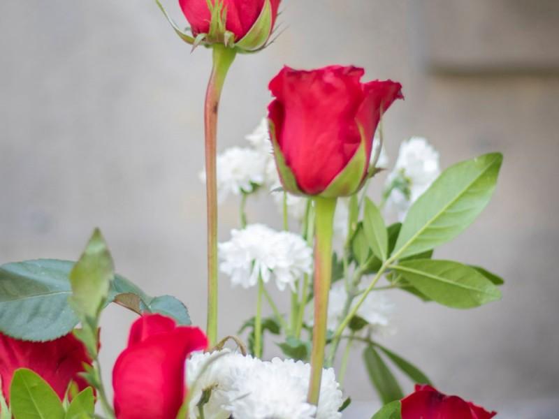 Se preparan florerías locales para 10 de Mayo