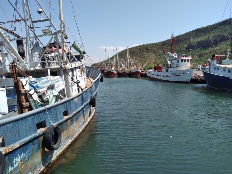 Se preparan pescadores de alta mar para el inicio de temporada