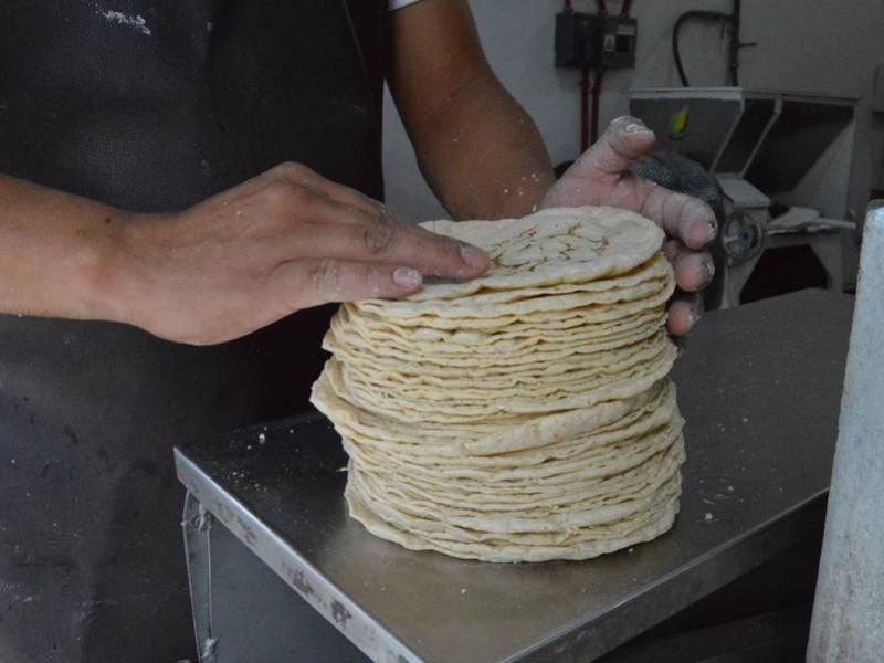 Se prevé nuevo incremento al precio de la tortilla