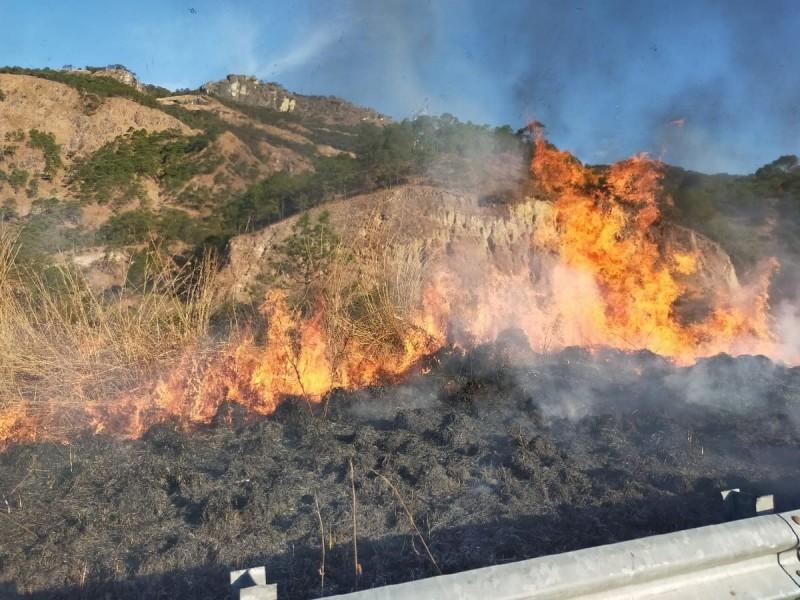 Se recrudecen incendios forestales en cuatro municipios de Nayarit