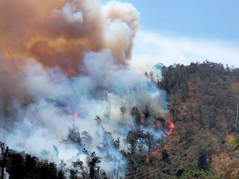 Se registra incendio en el cerro de San Juan
