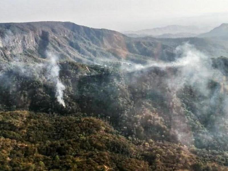 Se registra incendio en la selva de los Chimalapas