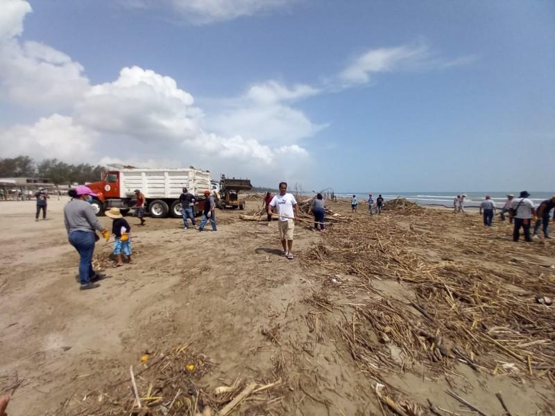 Se suman comerciantes y ciudadanos a limpieza de playa