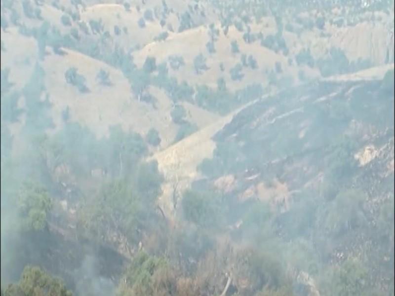 Se tiene expectativa alta por incendios forestales ante sequía
