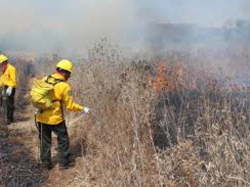 Se trabaja en la prevención de incendios en lo Altos