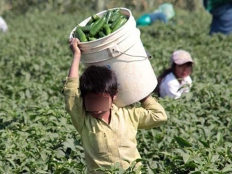 Defienden baja en trabajo infantil