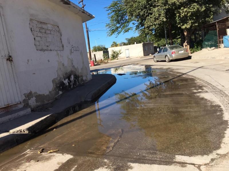 Sector en Topolobampo vive entre aguas negras