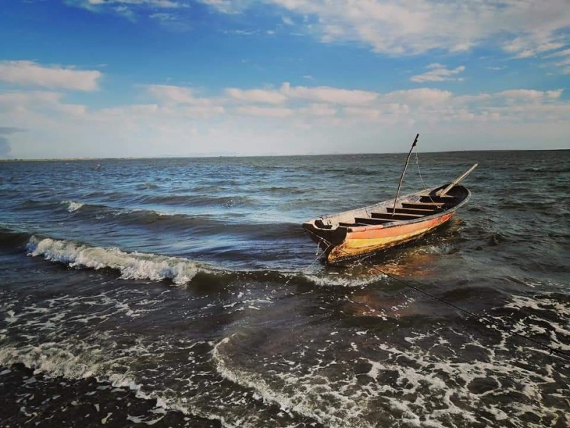 Sector pesquero con grandes retos frente a la reactivación económica