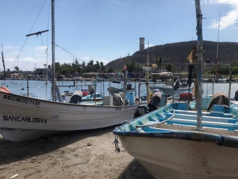 Sector pesquero en crisis ante desempleo y falta de apoyos