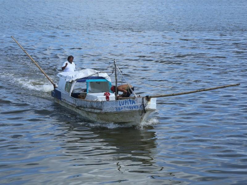 Precios altos de combustibles afectan competitividad de sector pesquero:Francisco Romellon