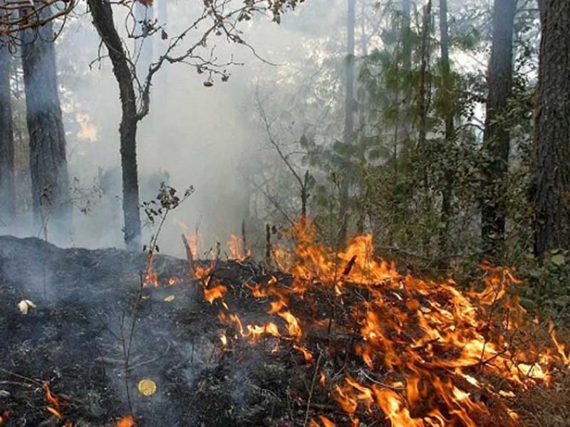 SEGOB emite declaratoria de emergencia por incendios