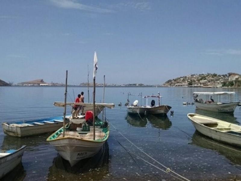 Seguridad Pública mantiene operativo contra robos en campos pesqueros