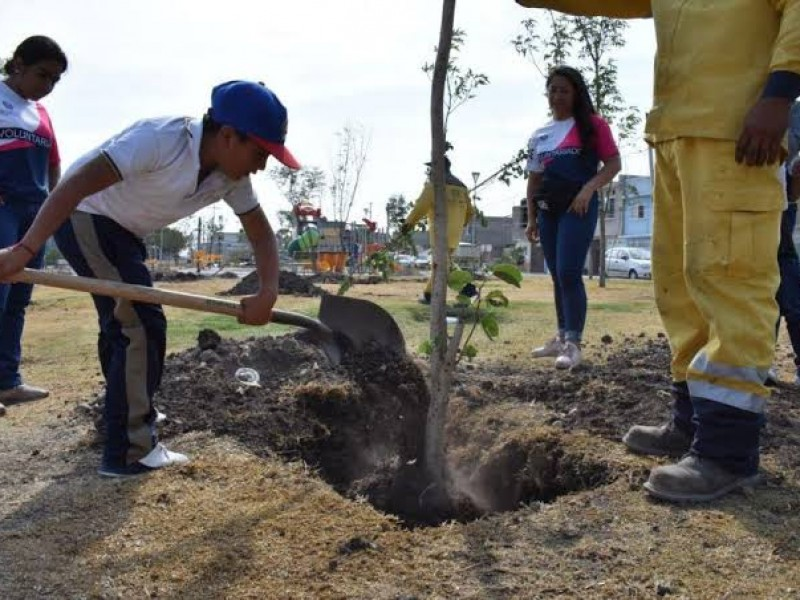 Sembrará mil árboles en Querétaro alcalde de SLP