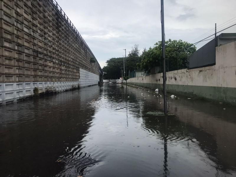 Senadora solicitará regreso del Fonden para atender afectaciones por lluvia