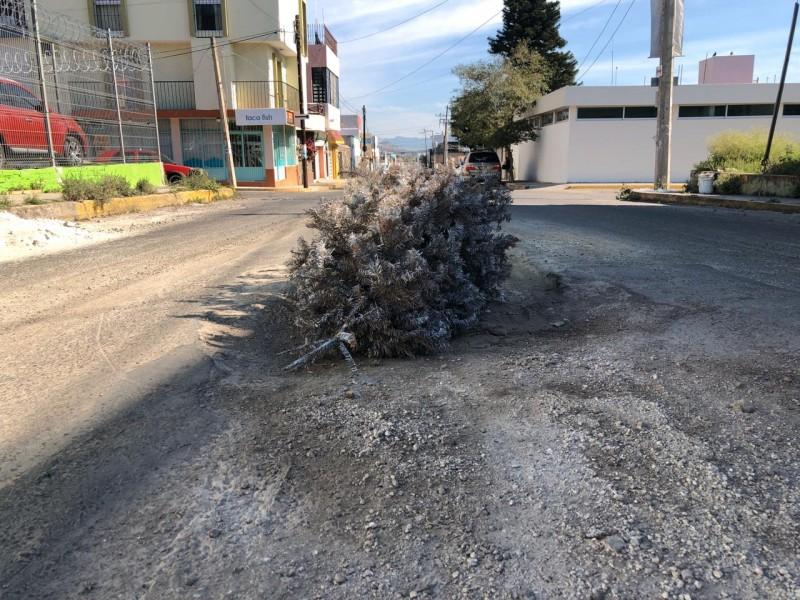 Señalizan zanja con pino en calle Fresno
