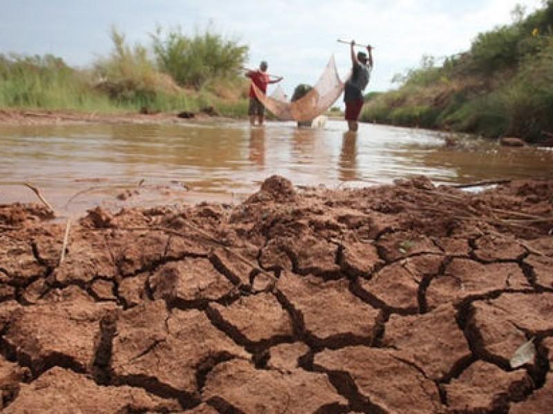 Sequía afecta al 26 por ciento de la entidad