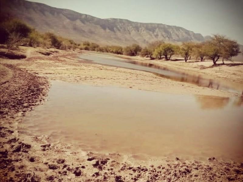 Sequía avanza rápido en Sinaloa con impacto social y económico