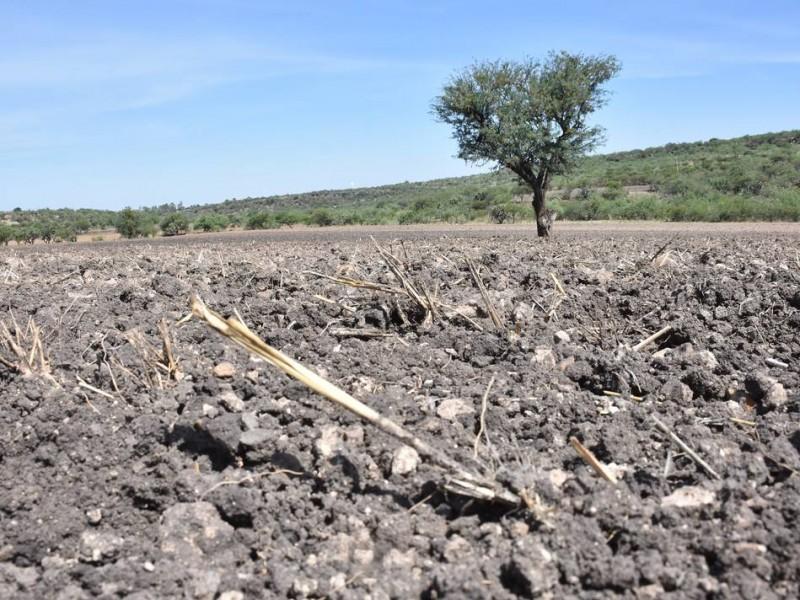 Sequía sigue afectando a comunidades serranas